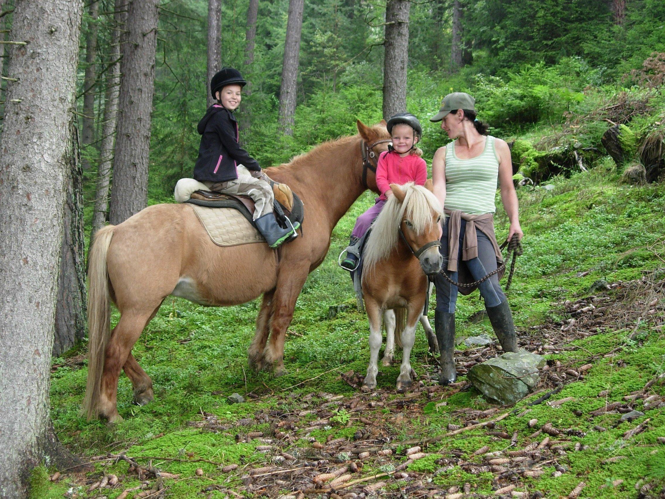 Horse Riding › Farm Kaserhof