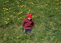 child-meadow