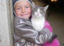 child-cat